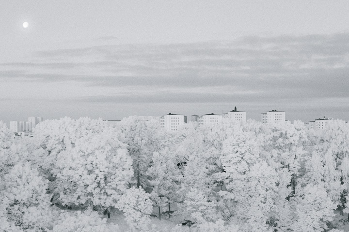 Infrared moonlit tree skyline shot from Vsterbron. Lngholmen, Stockholm, Sweden.
